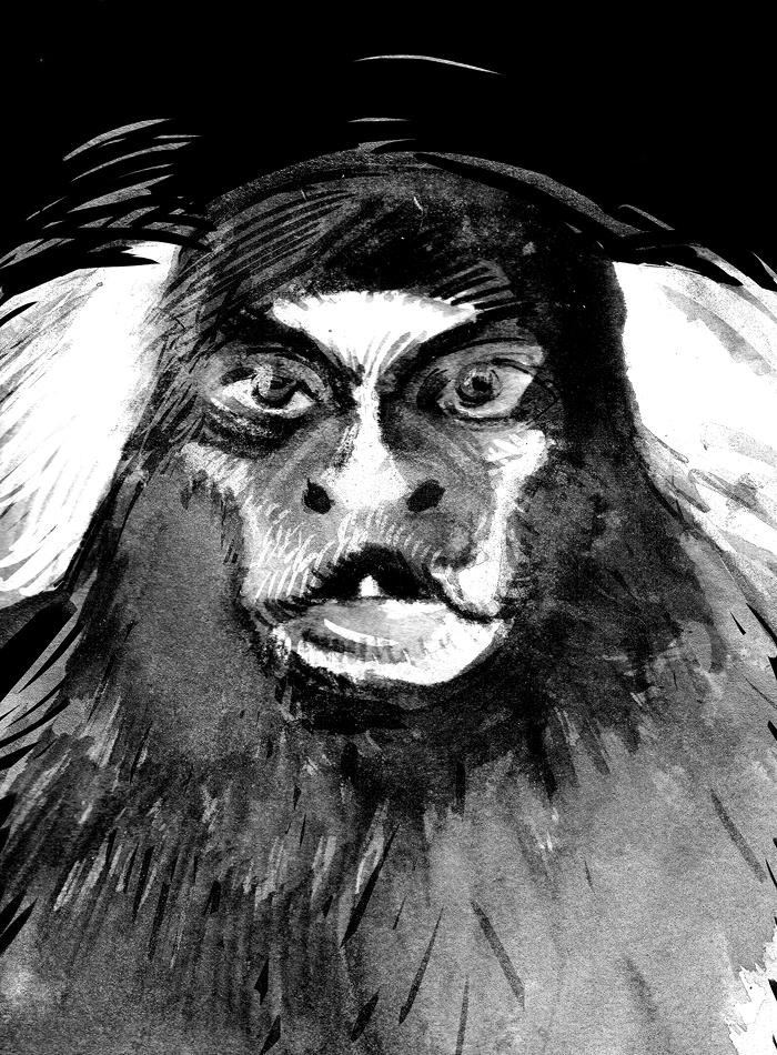 monkeychef143